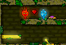 Fireboy and Watergirl in Forest Temple