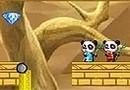 Pandas In The Desert
