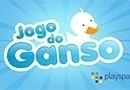 Playspace Jogo do Ganso