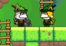 Super Racoon World