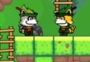 Super Racoon World